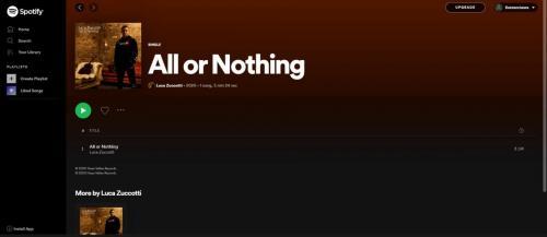 Luca Zuccotti single artwork on Spotify